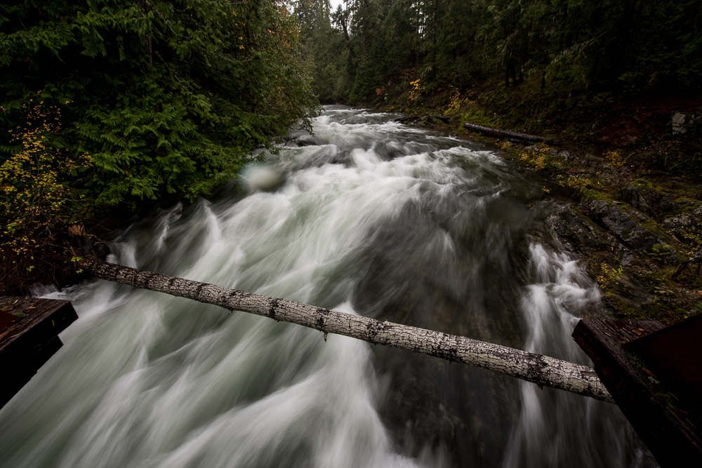 Little Qualicum Falls flowing under a bridge with a tree laying across the river