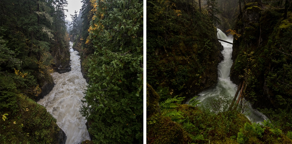Englishman River Falls & Little Qualicum Falls: 2 Must-Hike Vancouver Island Trails