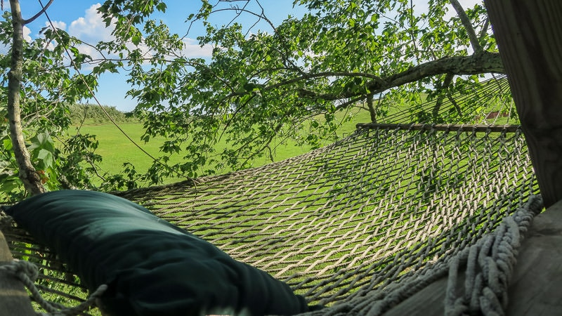 Hammock that is at the top of the treehouse