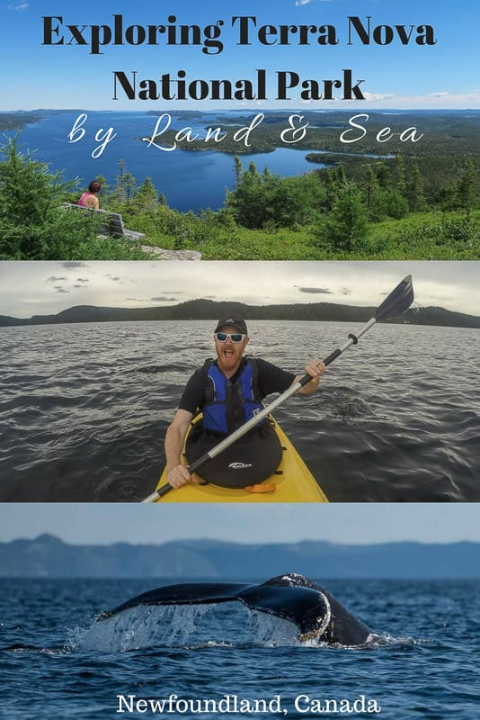 Only exploring Terra Nova National Park in Newfoundland by foot leaves you missing a huge chunk of what makes this park wonderful - the sea! Read about our hiking, kayaking and boating adventures.#canada #newfoundland #terranova #hiking #nationalparks #maritimes #atlanticcanada