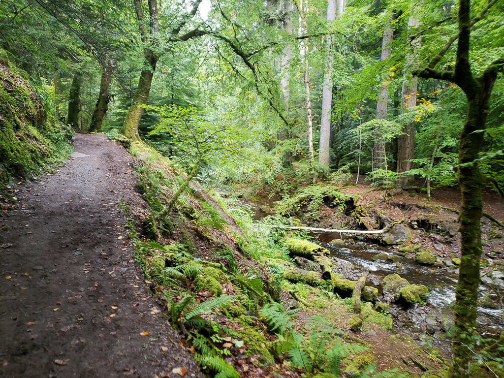 Trail at Reelig Glen that follows next to a beautiful river