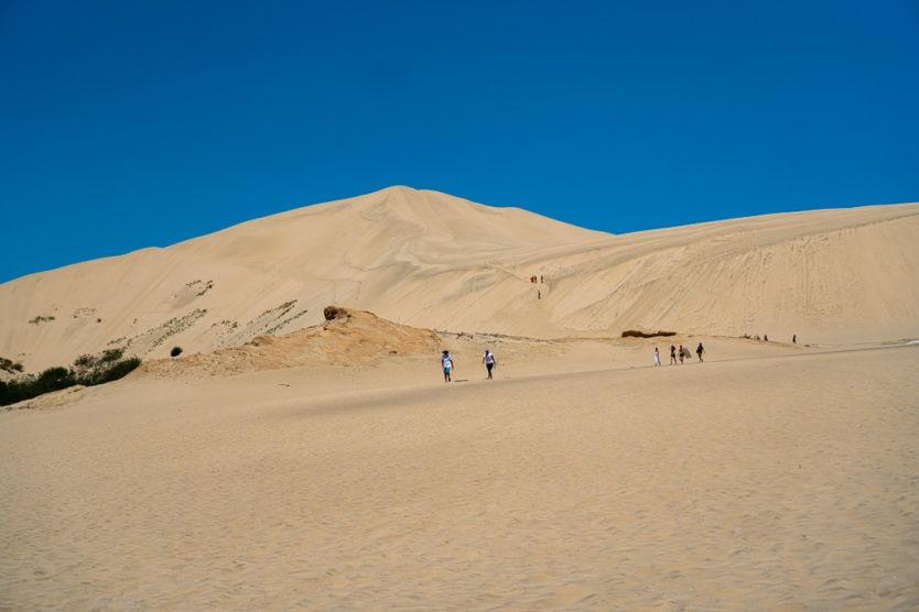 te paki sand dunes northland new zealand